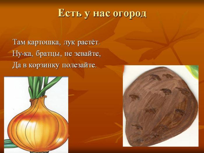 Презентация на тему овощи